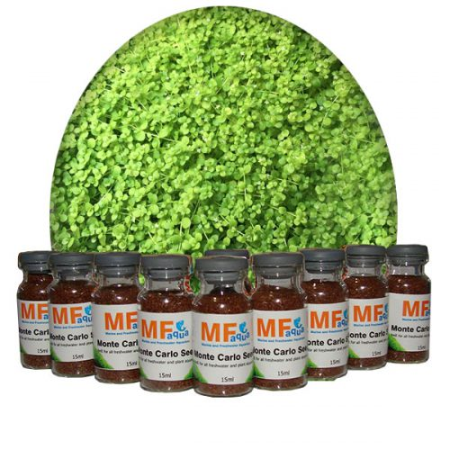 Monte Carlo grass seed 15ml